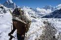 攀登海拔5000公尺