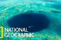 一睹大堡礁的美麗「藍洞」