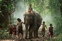 【驚艷泰國】牠不只是動物也是我的家人