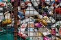 分解塑膠救星?科學家在垃圾場中發現吃聚氨酯的微生物