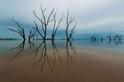 泰勒湖的湖面倒影
