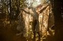 人影、森林、秋意