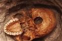 這些1000年前的骨骸,揭露東非最早的海嘯災難