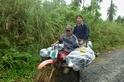 【老杜聊海蛇】菲律賓的海蛇研究驚魂記