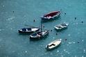 玻璃纖維船的全球汙染 學者警告:大量棄置海上 威脅海洋生物生存