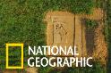 位於拉希加里古城的印度河文明古墓