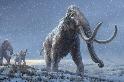 科學家從百萬年前的猛瑪象牙齒中取出了世界上最古老的DNA