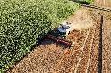 聯合國汙染報告 全球土壤壓力山大 各國缺乏「汙染者付費」政策