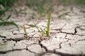過了這次乾旱還有下次!臺灣不容樂觀的水資源困境──專訪許晃雄