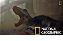 101史前教室:恐龍