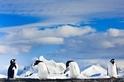 遠征地球彼端 探究冰原之美
