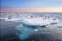 穿梭流冰 一探北國冰雪奇旅