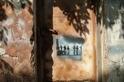 特拉維夫:街頭藝術