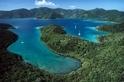 要救珊瑚礁,先救紅樹林
