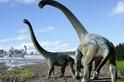泰坦巨龍遠征澳洲?先過南極再說