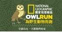 您的愛心都是野生鳥兒的助力 @2016國家地理為野生動物而跑