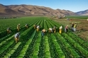 想減緩氣候變遷,先從減少食物浪費做起