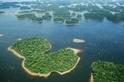 研究稱亞馬遜河的野生動物受到水力發電大壩的威脅