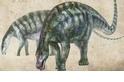 「神奇恐龍」化石,顛覆了世界上最大恐龍的起源故事