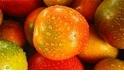 紅通通的大番茄,它為什麼不好吃?