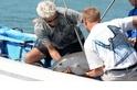 小頭鼠海豚的最後拯救項目宣告失敗