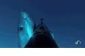 影片:大白鯊攻擊事件