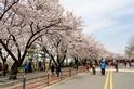 來慶尚南道寫下對於美景的全新感受