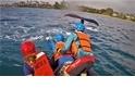 座頭鯨遭漁網纏繞 救援人員冒險上前解救!
