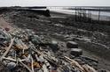 耗時一年海廢快篩調查,揭露臺灣海岸汙染真相!