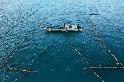 從友善漁法開始 展望海洋教育