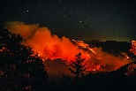 野火燒不盡毒煙多又遠