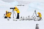 南極攝影工作坊