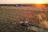 歐盟推CAP農業改革 號稱史上第一個農業生態計畫 仍遭批不夠力