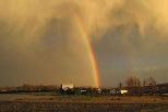 11月的彩虹