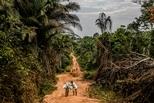 影像藝廊:追蹤致命的世紀病毒