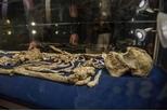 360萬年前的人類祖先公諸於世
