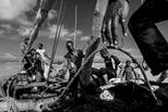 尚吉巴島的漁夫