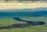 首份生態系統效益分析出爐:慎選復育三成的土地 可保護七成將滅絕物種
