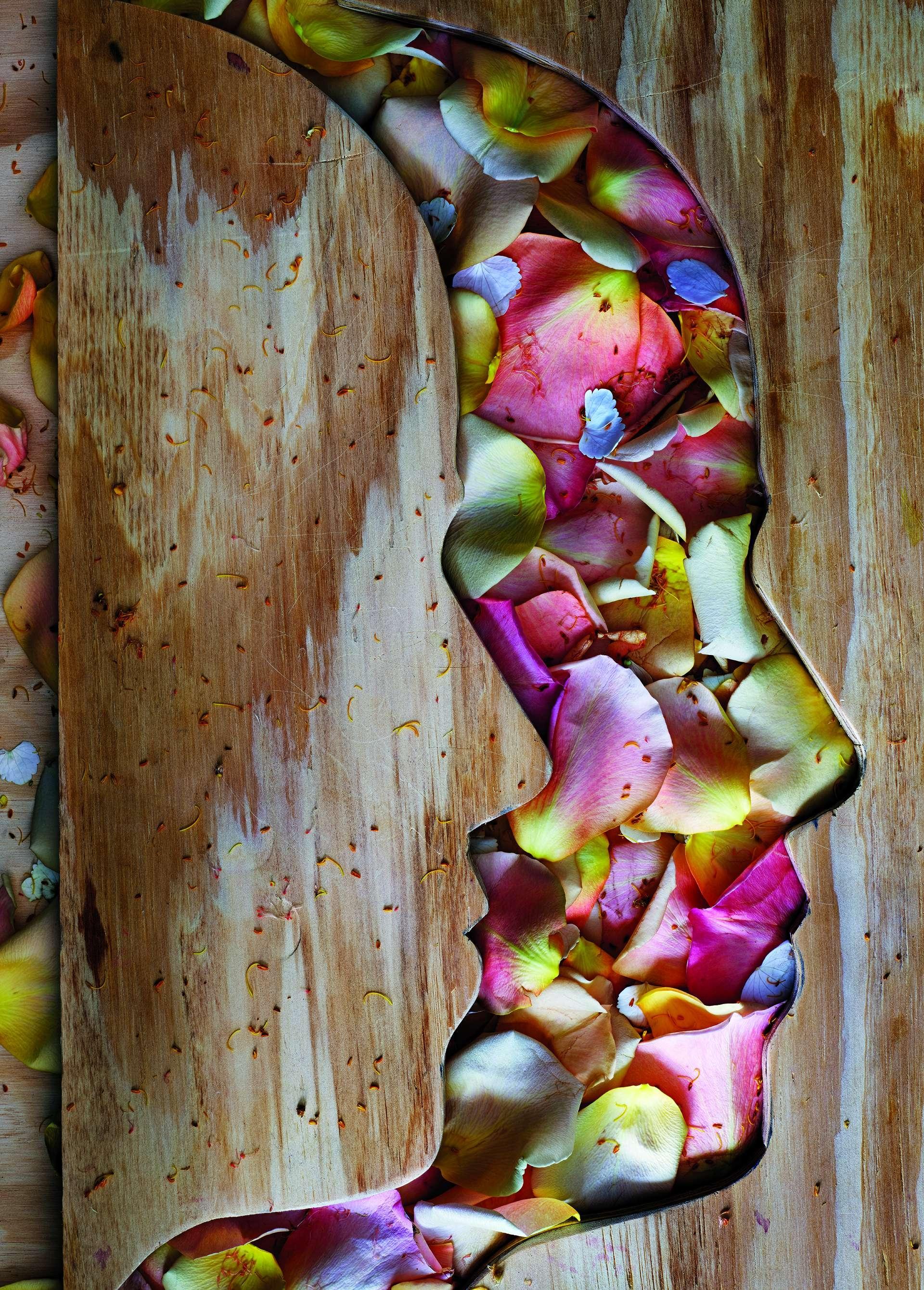 莫瑞爾以三夾板和玫瑰花瓣,創作了女兒蘿拉的側臉。攝影:阿貝拉多.莫瑞爾