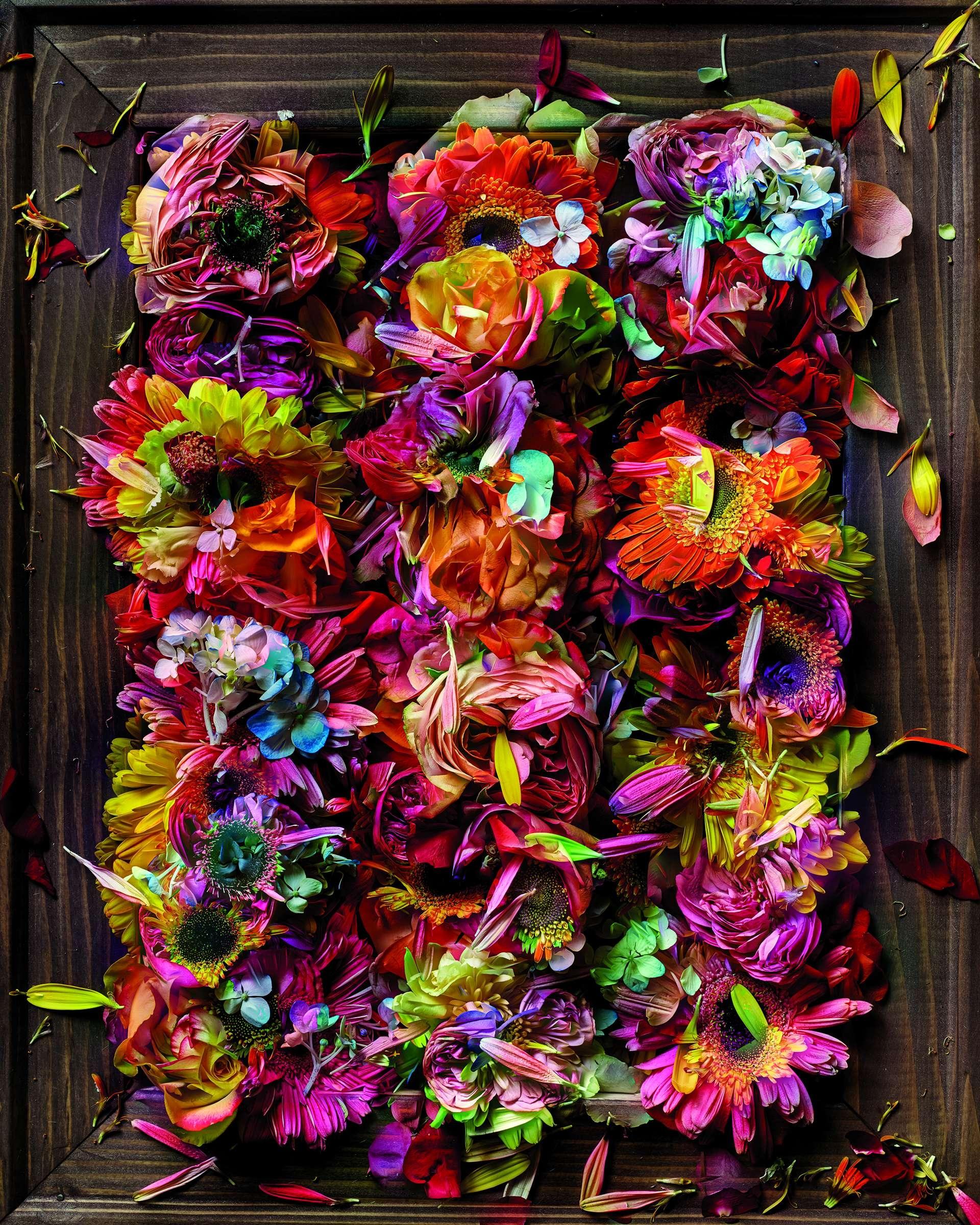 莫瑞爾在顏料和道具的輔助下布置花朵以重現名畫和藝術風格,再以他的想像力添加裝飾。攝影:阿貝拉多.莫瑞爾