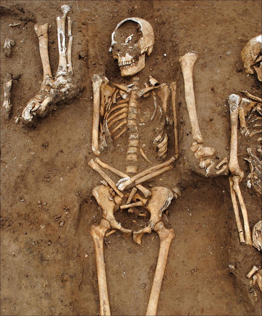 在公元1348到1349年鼠疫爆發期間,48名死者被埋葬在英格蘭桑頓修道院(Thornton Abbey)內的一座集體墳墓(細節如上圖)。 PHOTOGRAPH COURTESY UNIVERSITY OF SHEFFIELD, ANTIQUITY PUBLICATIONS LTD