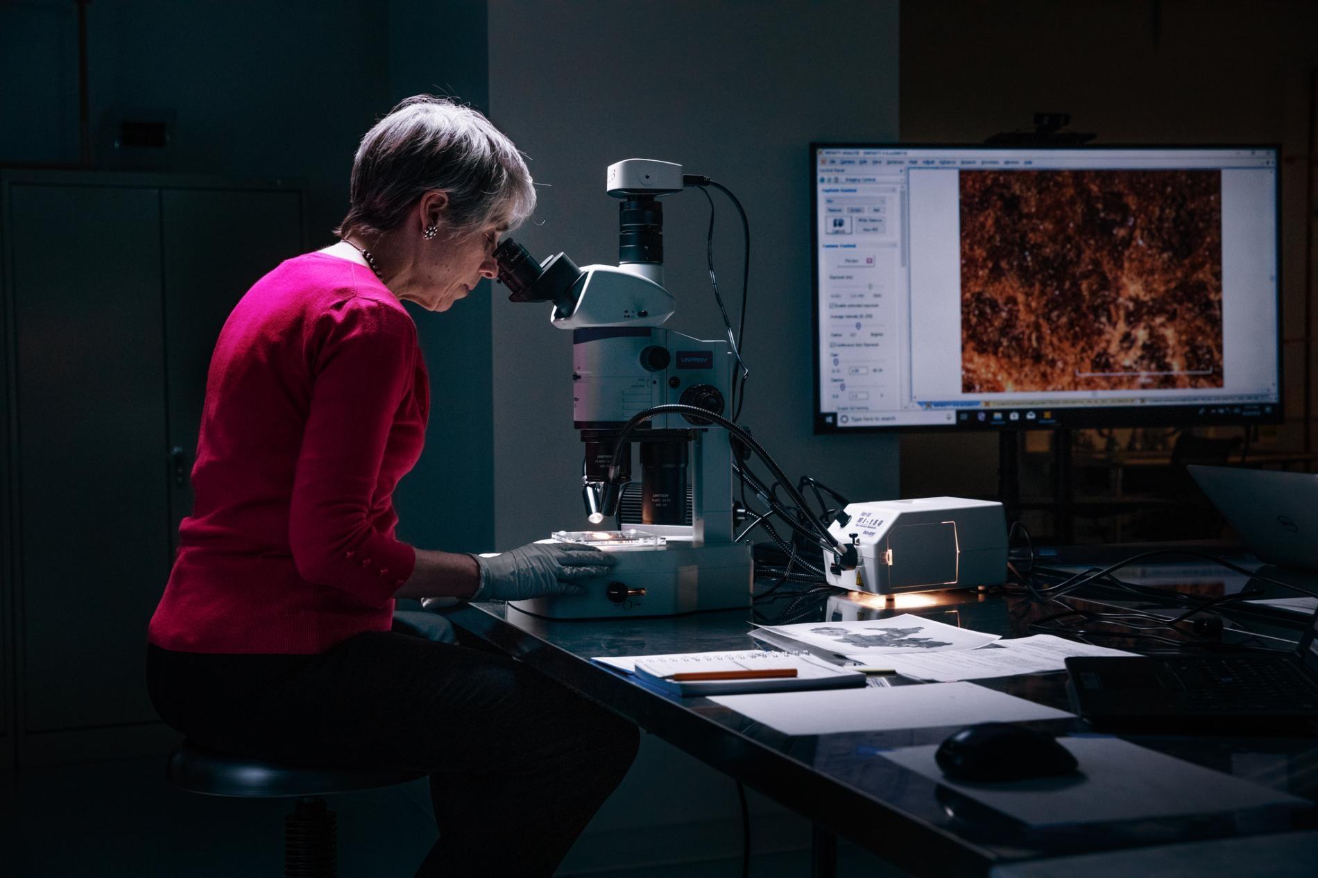 調查員阿比蓋爾.匡特(Abigail Quandt)是巴爾迪摩華特斯美術館的書籍與紙張保存主任,她正在檢視一片《創世紀》碎片,以尋找特殊的表面特徵。「我們的共同目標就是要對研究死海古卷的學者有幫助。」她說。 PHOTOGRAPH BY REBECCA HALE, NGM STAFF