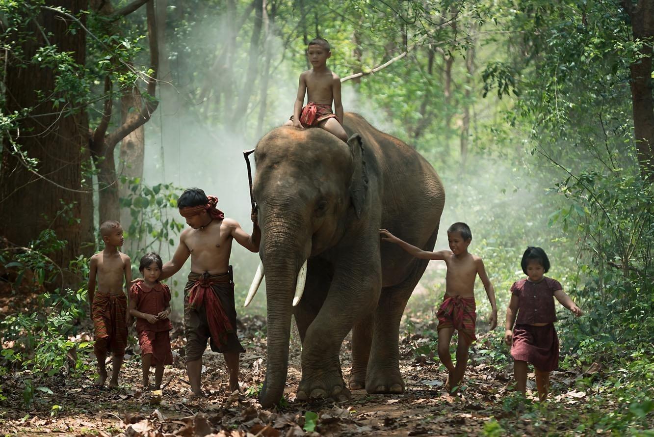 【驚艷泰國】牠不只是動物也是我的家人 (Sponsored)