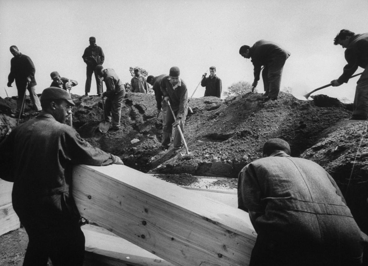 1963年,受刑人將無人認領的遺骸埋葬在紐約市哈特島(Hart Island)上。島上這片公墓已經使用了150年,隨著近期紐約市的停屍間因疫情爆滿,這片公墓成為部分新冠病毒罹難者的最後安息之地。PHOTOGRAPH BY ARTHUR SCHATZ, THE LIFE IMAGES COLLECTION/GETTY
