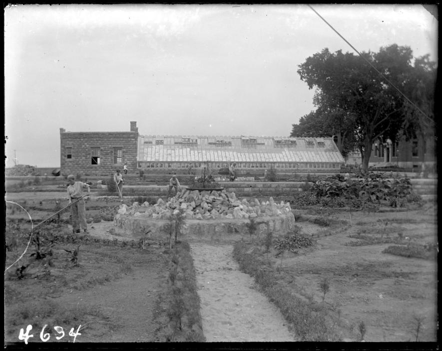 1905年,哈特島上建起一座「惡毒少年」的感化院。這張1913的照片展示少年們在溫室附近工作。在150年間,這座島上曾經有過許多機構。PHOTOGRAPH COURTESY NEW YORK HISTORICAL SOCIETY