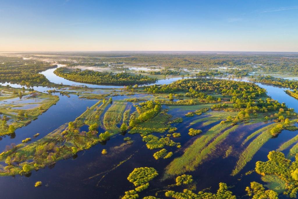 波里西亞是歐洲最大的溼地。照片來源:世界自然基金會