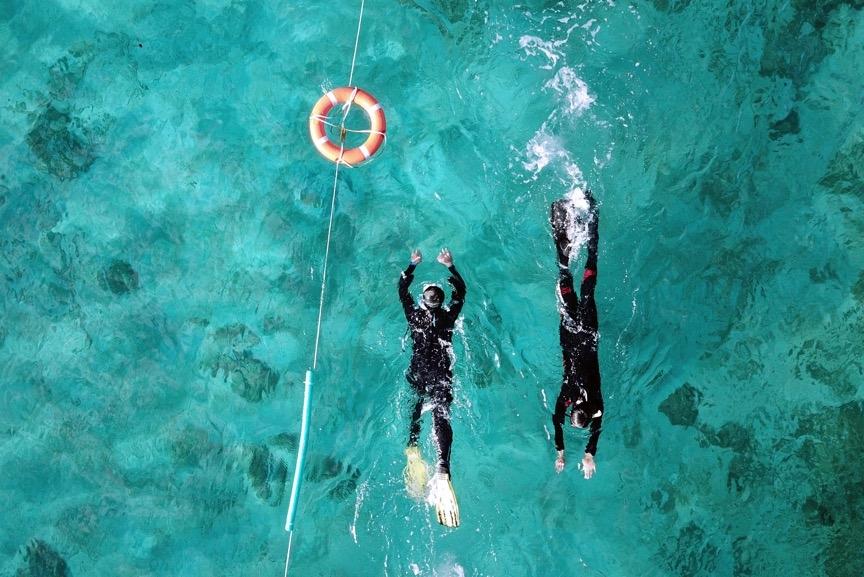 除了重裝訓練外,每天早上都有游泳與輕裝浮潛的練習,務必讓學員快速地擁有足夠的體能與踢動蛙鞋的技巧。攝影:朱雲瑋