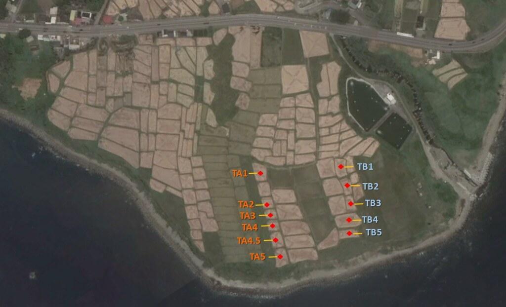 植生緩衝帶田區 (TA) 與水稻田區 (TB)。植生緩衝帶田區共有 5 塊調查田區,其中 TA1 與 TA5 未種植作物作為入水田區與出水田區進行逕流水調查。