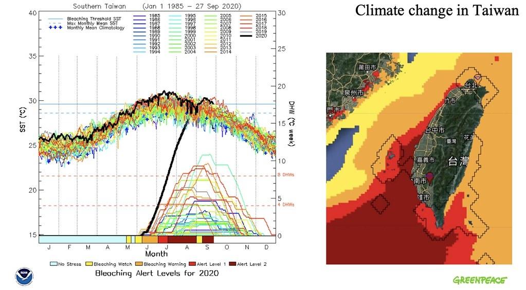 Aziz J Mulla 表示,臺灣南部海水溫度從今年春季開始就急速升高,圖中紅色高溫海水區塊一路由南向北延伸,影響墾丁、綠島、蘭嶼沿岸珊瑚。綠色和平提供