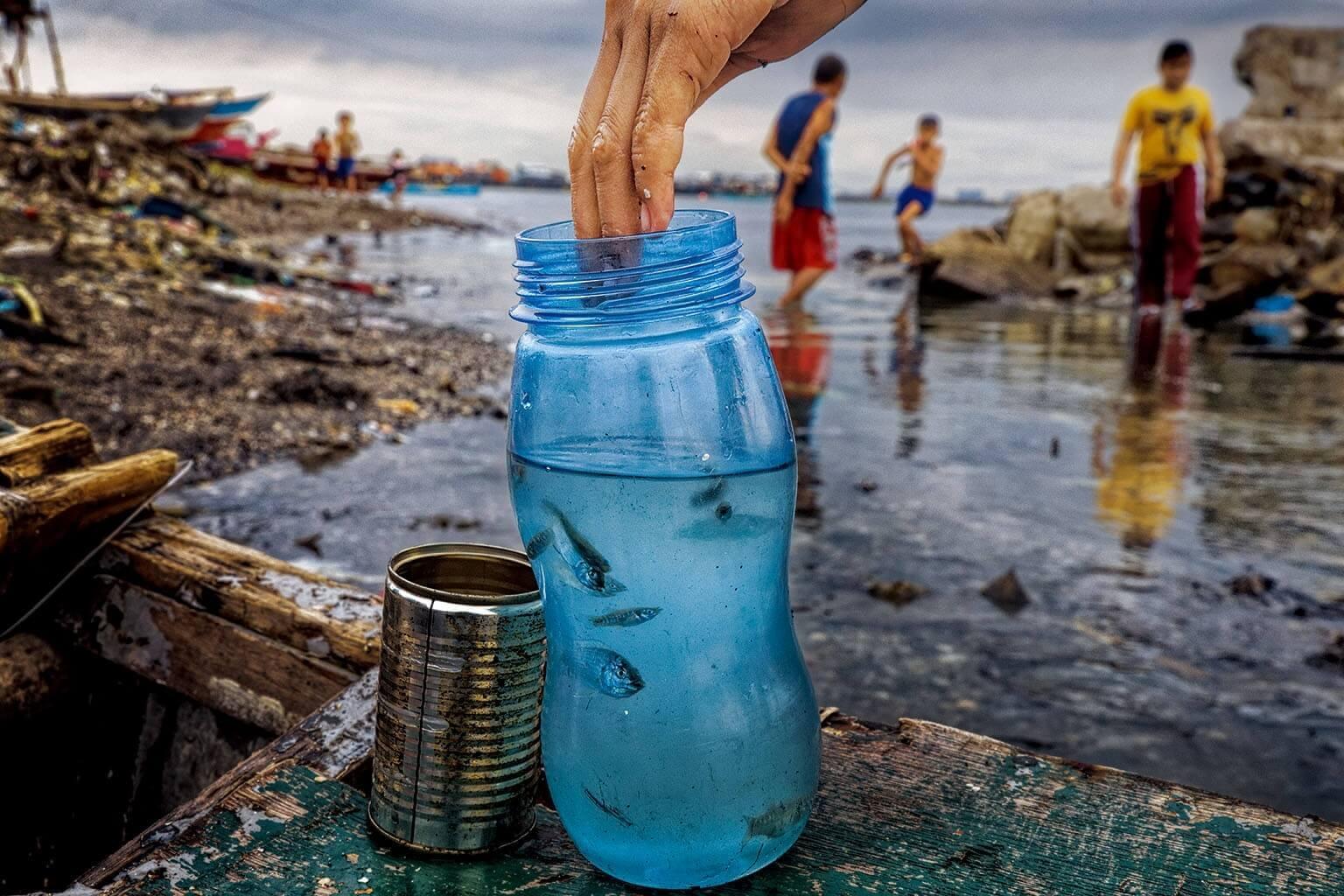 住在菲律賓馬尼拉灣的孵化場附近的孩子抓了這些魚,牠們的生態系受到家庭廢水、塑膠和其他垃圾的汙染。魚類食入的微塑膠是否影響人類仍然未知,但是科學家正在尋找答案。RANDY OLSON